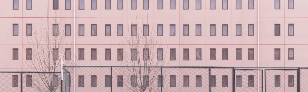 Pink building with trees in winter. Photo by Alexander Tsang on Unsplash